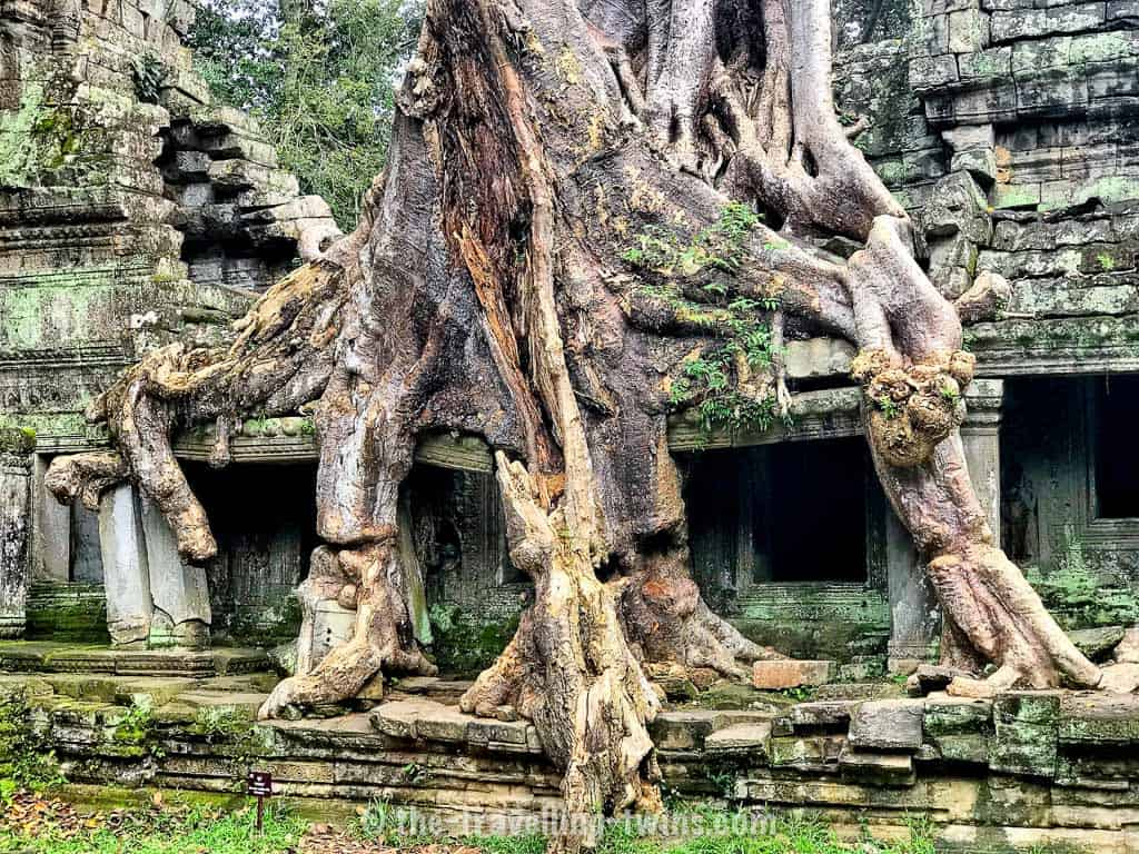 things to do in siem reap,  angkor temple,  what to do in siem reap,  angkor wat ticket,  angkor wat tour