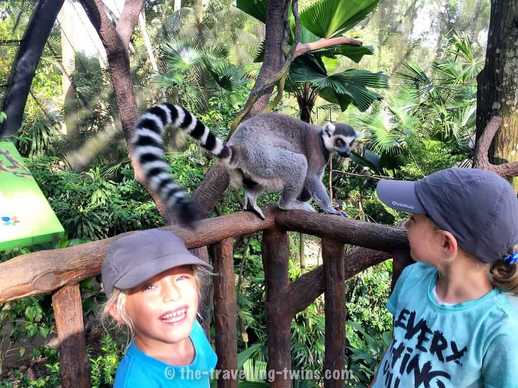 best things to do in singapore,  things to do in singapore this weekend,  things to do in singapore with kids,  singapore with kids