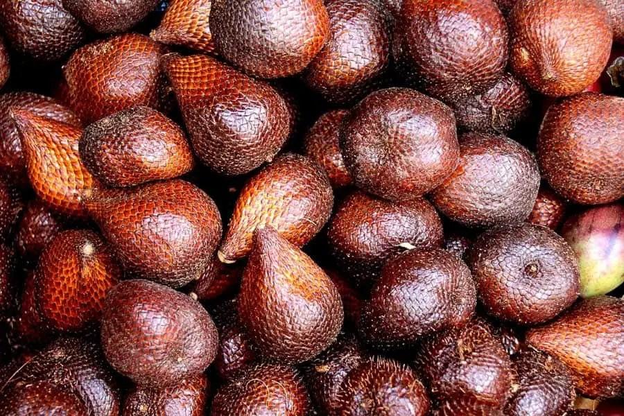 snake fruit native to asia