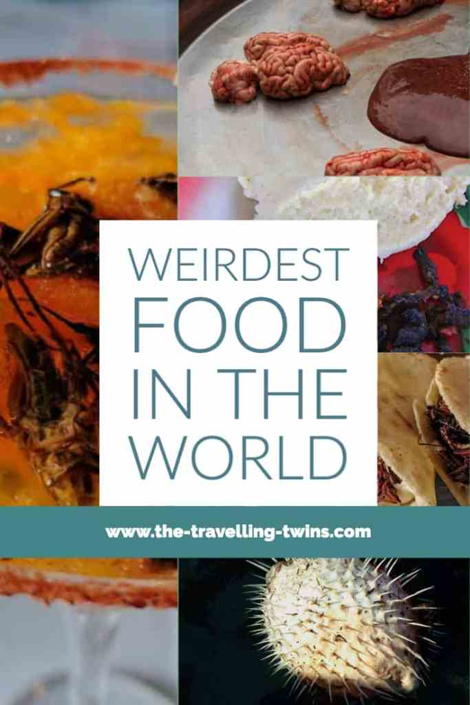 bizarre foods around the world weird foods:live octopus insect caviar, casu marzu, nest soup,  frog legs  all rights reserved