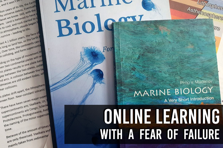 Online Learning with a fear of Failure
