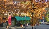 """<h5>Kürfürstenstraße</h5><p>Kürfürstenstraße <strong>Sorriso Ristorante</strong> © <a href=""""https://goo.gl/maps/GeG83ng8wP32"""" target=""""_blank"""" >Google StreetView</a><br>Datum der Aufnahme: 2009                                                                                                                                                                                                                                                               </p>"""