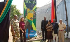 Berliner Mauer in Kingston, Jamaica