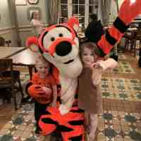 Top 5 Buffet restaurants at Disneyland Paris
