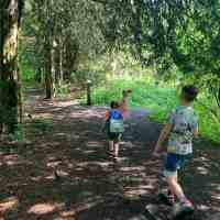 Best parks in Solihull and beyond