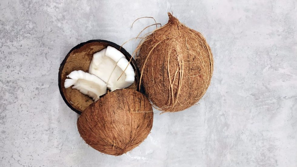 two brown coconuts