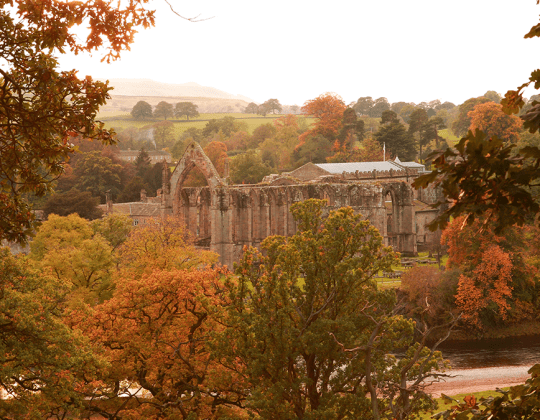 Bolton Abbey Has Cancelled Their Christmas Event Due To Poor Visitor Behaviour