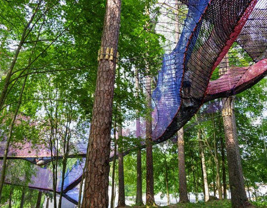 This Yorkshire Theme Park Has Added A New Tree Top Trail