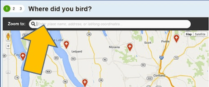 "Google map with large golden arrow pointing to an empty search field; question on top says ""Where did you bird?"""