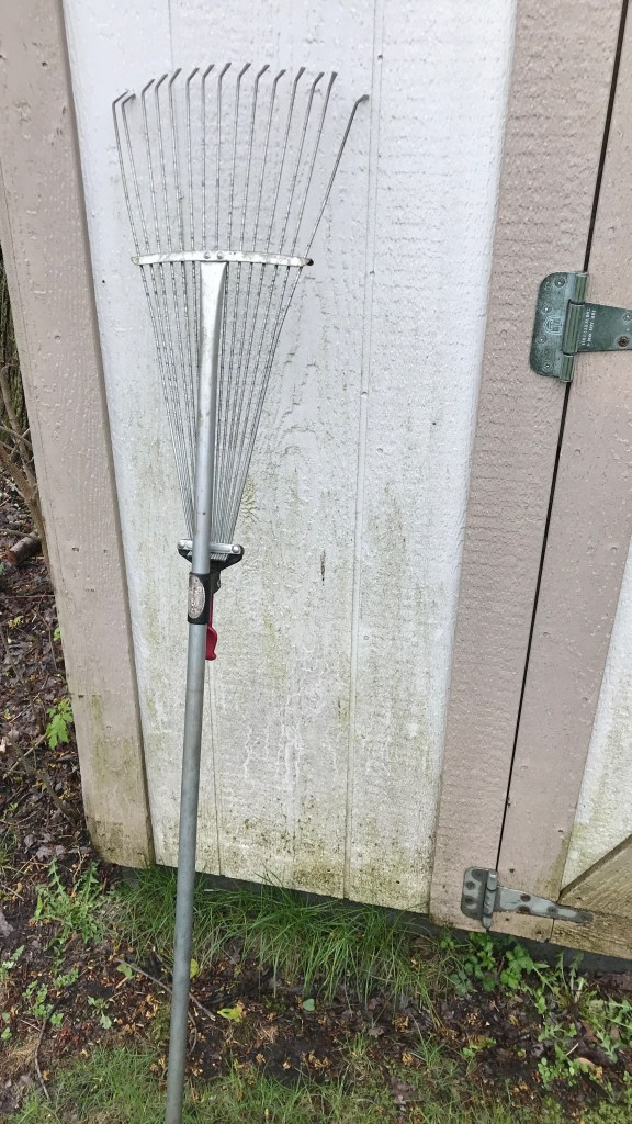 Metal rake with tines spread in a thin width