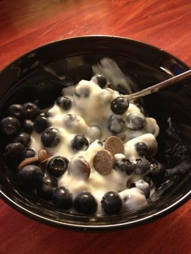 blueberries, yogurt and choc chips