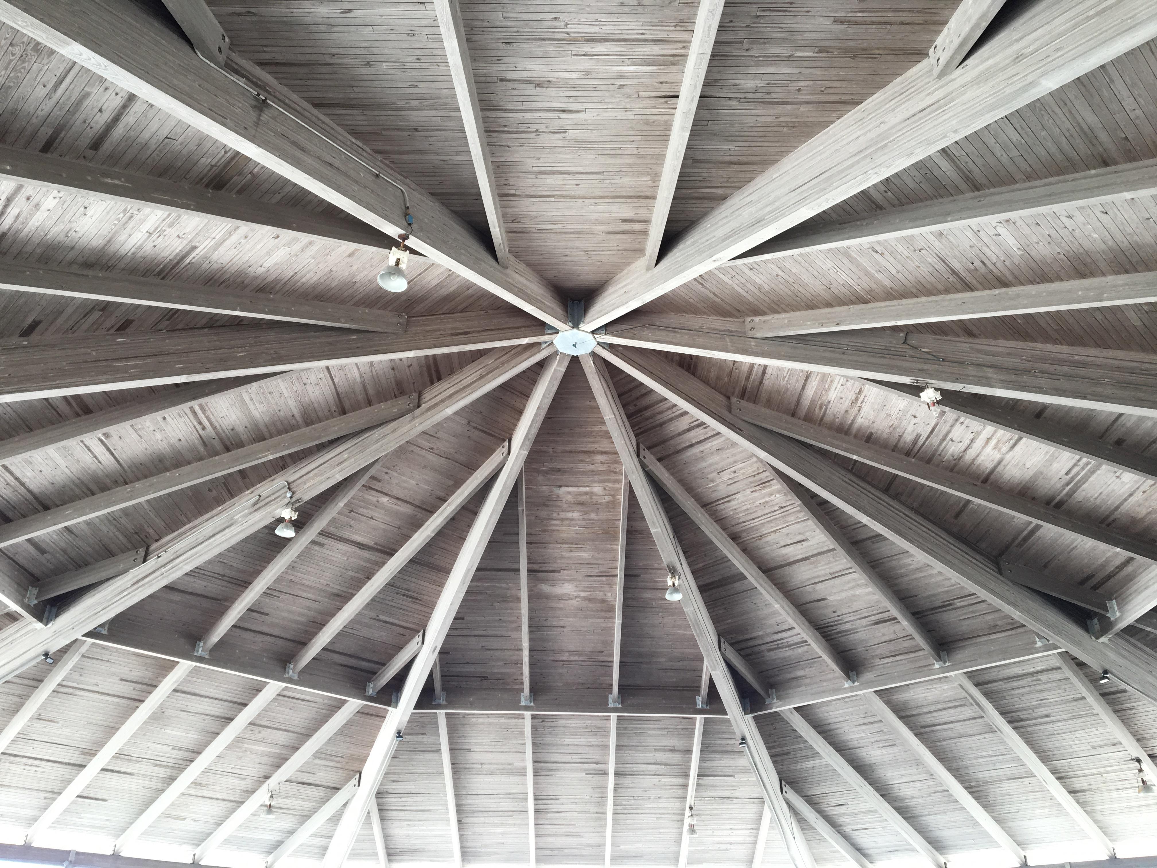Pavillion ceiling