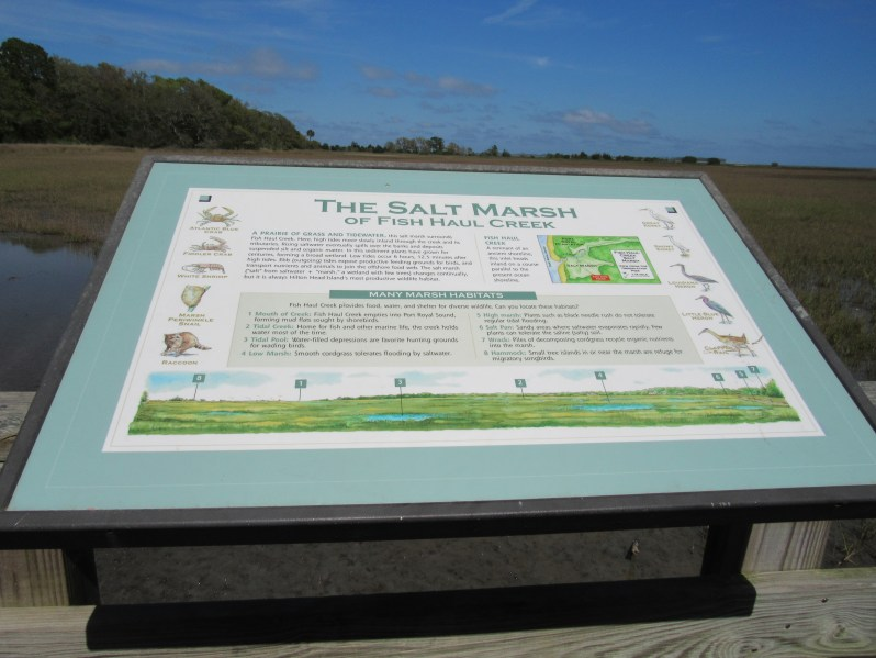 The Salt Marsh Habitats