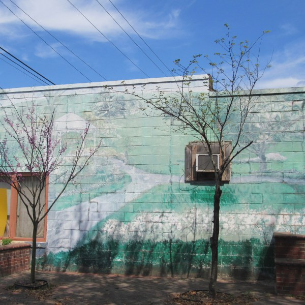 Ridge land South Carolina mural