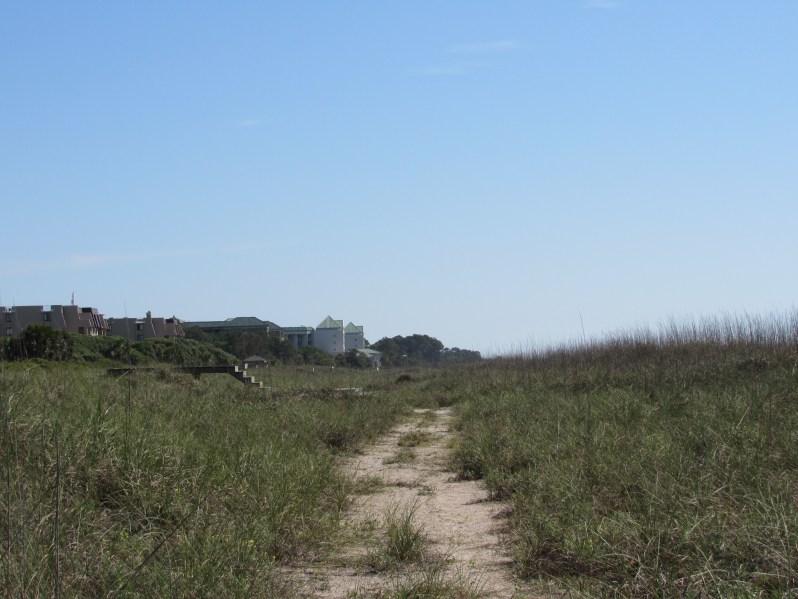 Sand dune trail