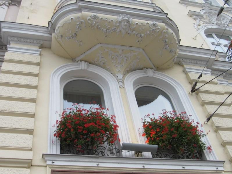 flowers on the window ledge