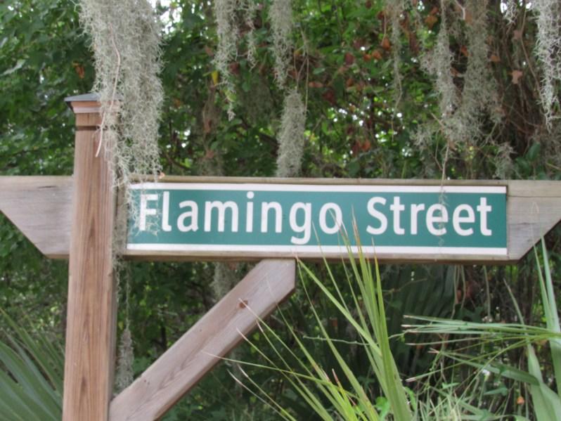 Flamingo Street
