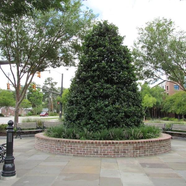 Hutchinson Square