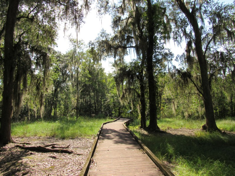 Boardwalk at Cay Creek Wetlands