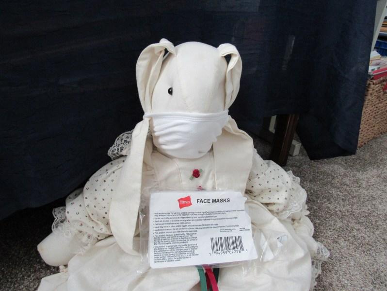 Hanes Face Masks