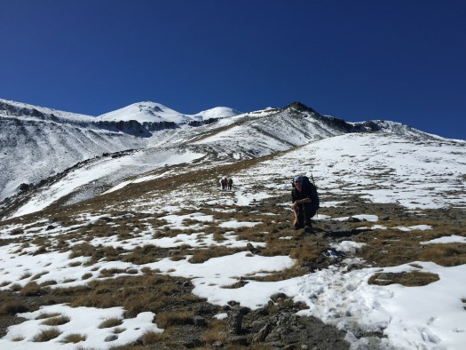 Heading up to High Camp