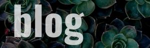 blog: the social academic