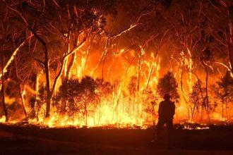 australian bushfires abc