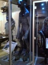 Harry Potter Studio Tour London Lupin werewolf image