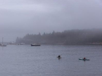 Acadia Kayakers