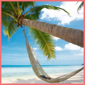 tropical beach palm tree hammock