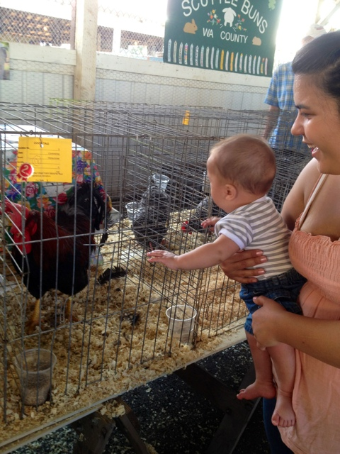 Rides, Animals, and Good Quality Family Time at the Fair (4/6)