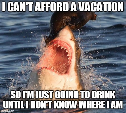 50 Funny Travel Memes That Will Crack Your Ribs The Adventurous Feet