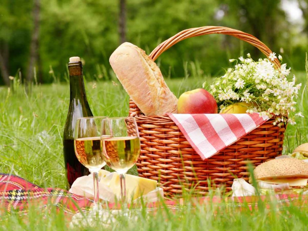 Going For a Picnic is one of the fun summer ideas