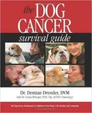 Dog Cancer Signs and Treatments
