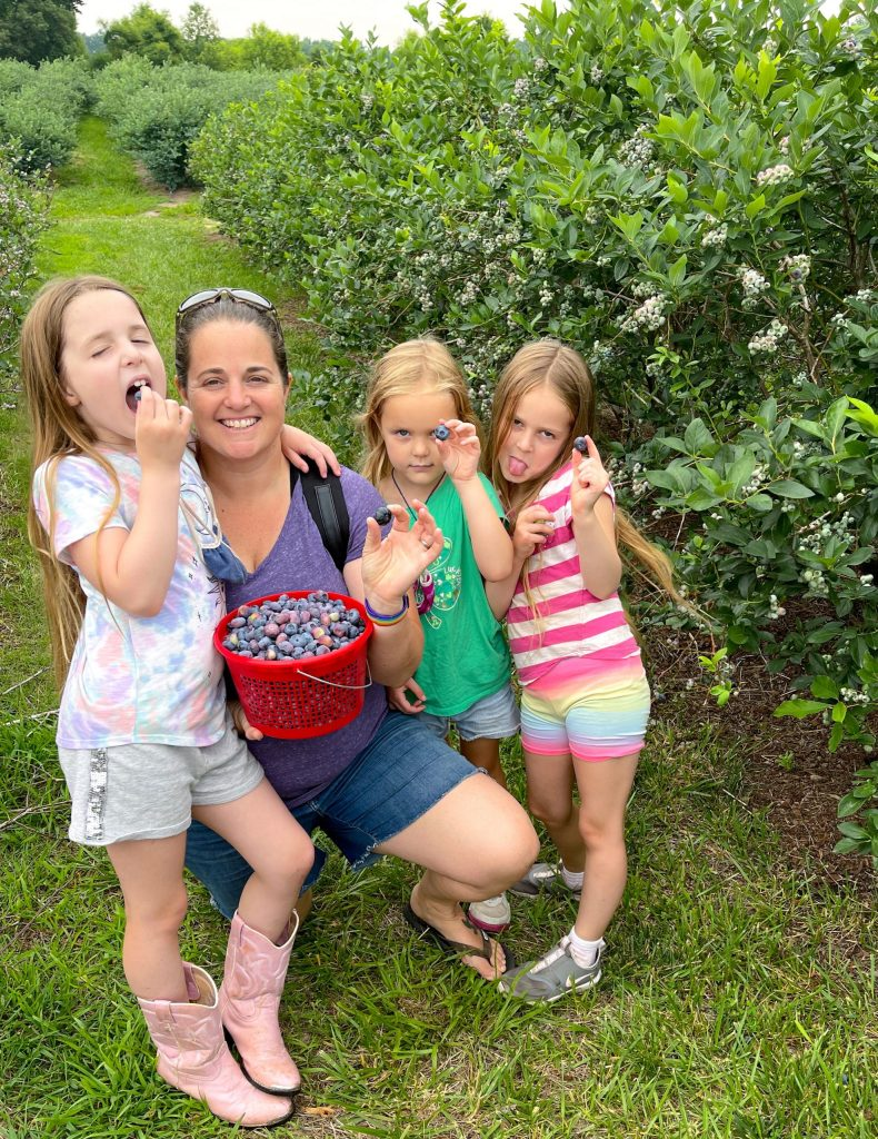 family at pick your own blueberry farm