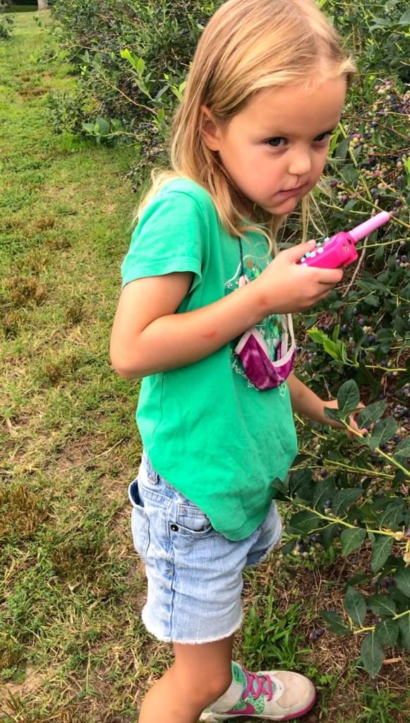 kid picking blueberries