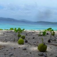 Tikling Island, Matnog, Sorsogon (Philippine Summers on my Mind)