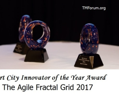 Agile Fractal Grid Honored with TM Forum Excellence Award 2017