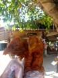 Chiang Mai Chicken Head