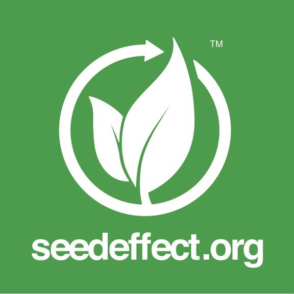 Seed Effect