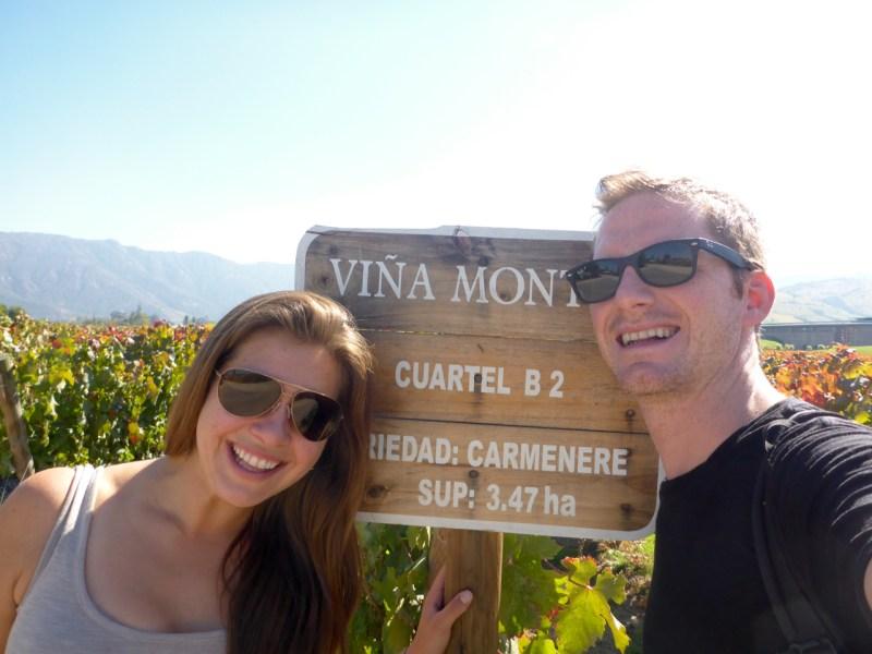 Montes Vineyards
