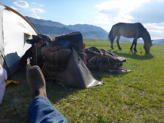 Relaxing on the Mongolia Steepe