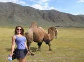 Trying to make friends with a camel