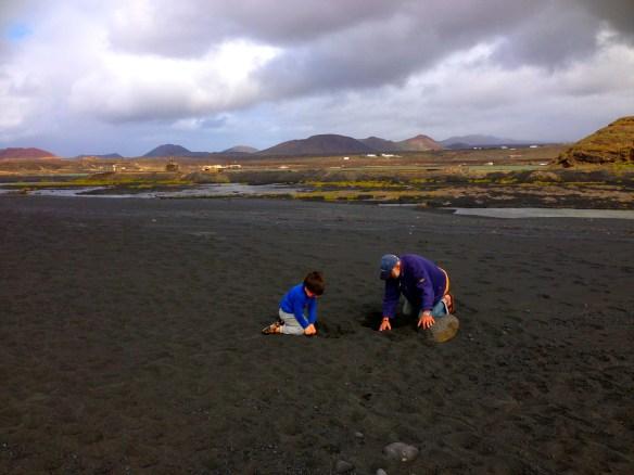 De har faktisk ganske kjedelige hobbyer, her letes det etter små steiner på den svarte stranden på Lanzarote. ZZZzzzzzz.......