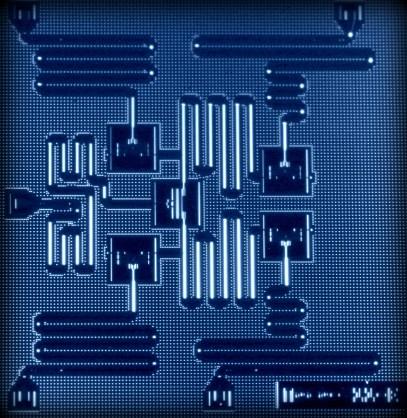 IBM's Quantum x2000 chip