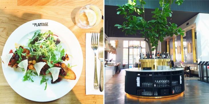 plantage_artis_restaurant_amsterdam-e1411048995128