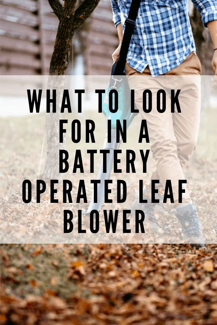 what to look for in a battery operated leaf blower