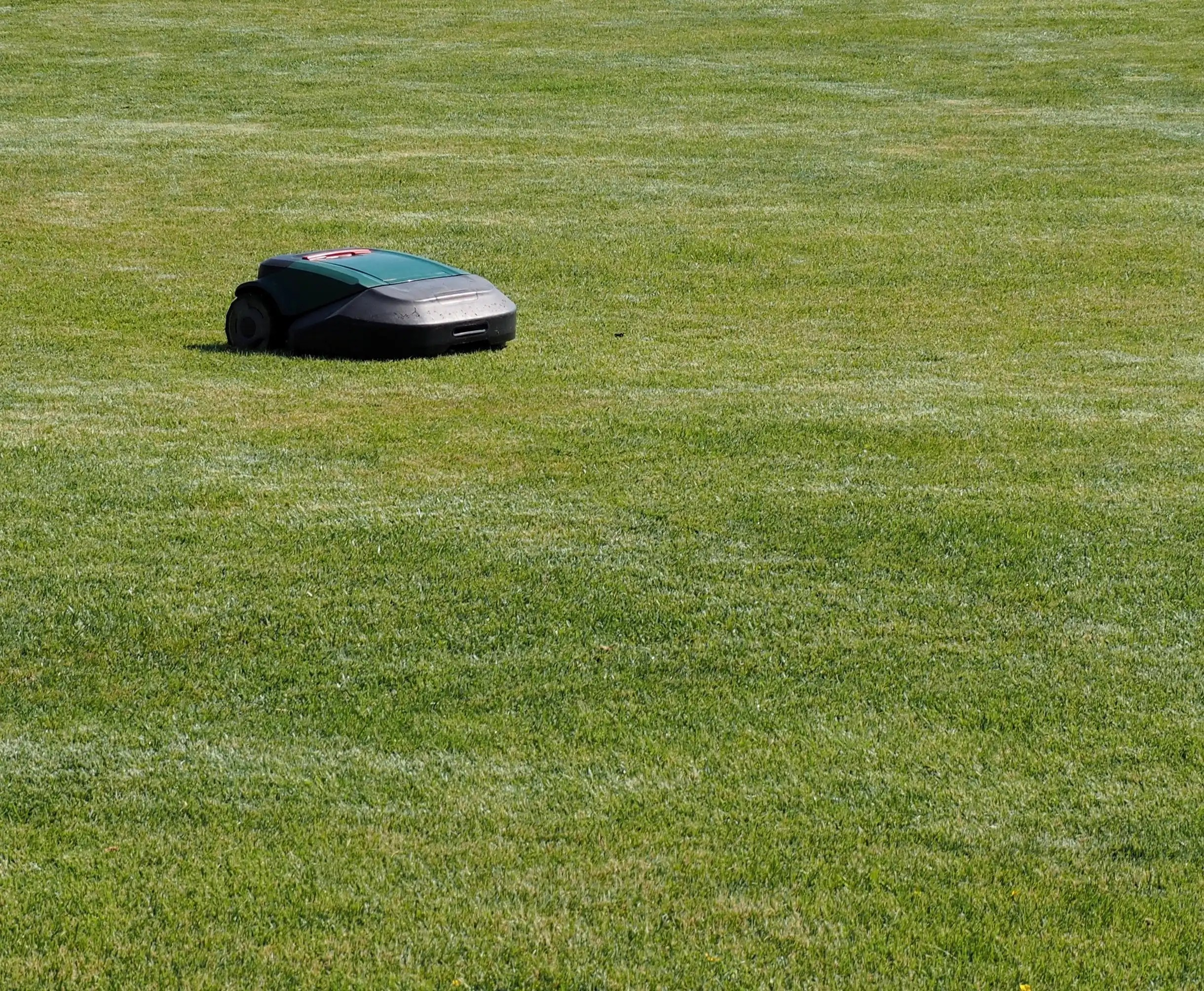 robot lawn mower cutting large lawn