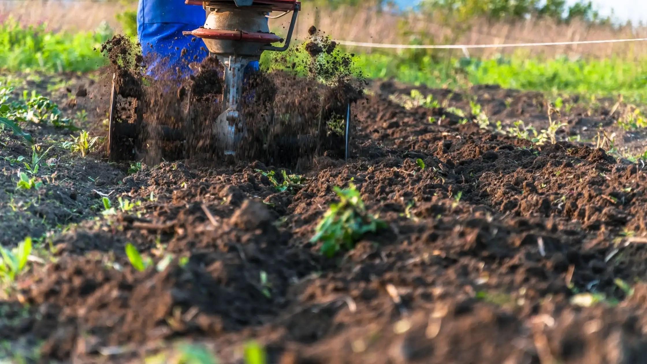 garden tiller tilling soil