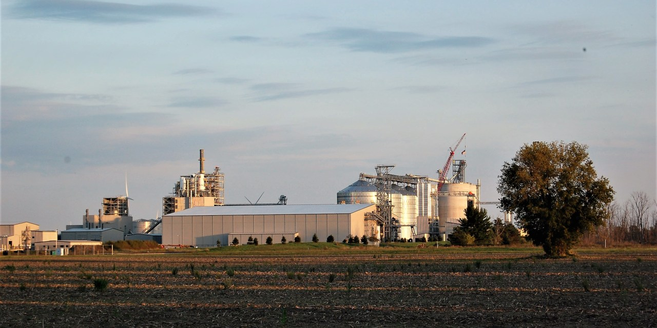 Contaminated soybeans raise a larger issue